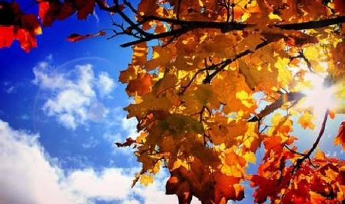 Un bien triste automne